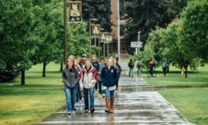 Montana State University has set a new enrollment record, with 16,902 students on campus this fall. (MSU PHOTO)
